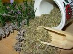 dried herbs-sacredsutine