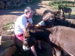 Lewis and donkeys