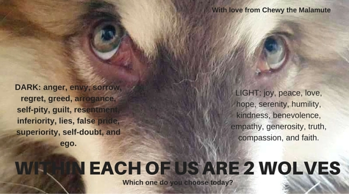 Within each of us are 2 wolves